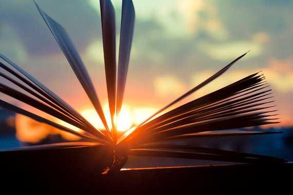 Puisi | Buku Peringatan