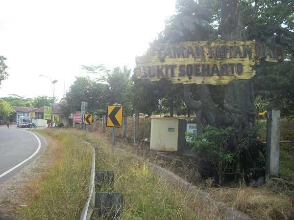 Yuk Jajal Taman Hutan Raya (Tahura) Peninggalan Soeharto di Kaltim!