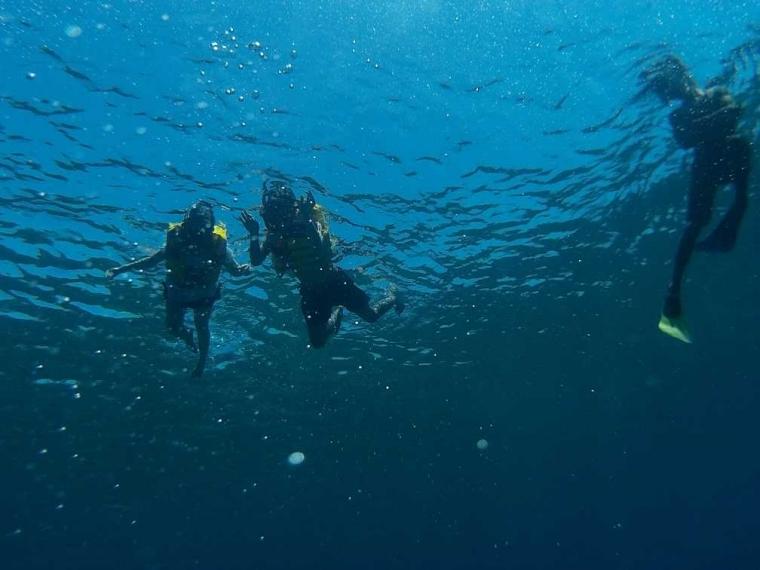 Berwisata Melihat Dunia Bawah Laut di Gili Trawangan