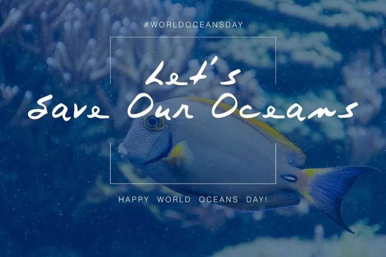 Laut dan Kelangsungan Makhluk Bumi (Refleksi Hari Laut Sedunia)