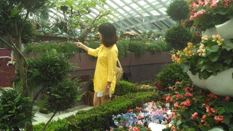 Inilah Gardens by The Bay yang dikunjungi oleh Kim Jong-un