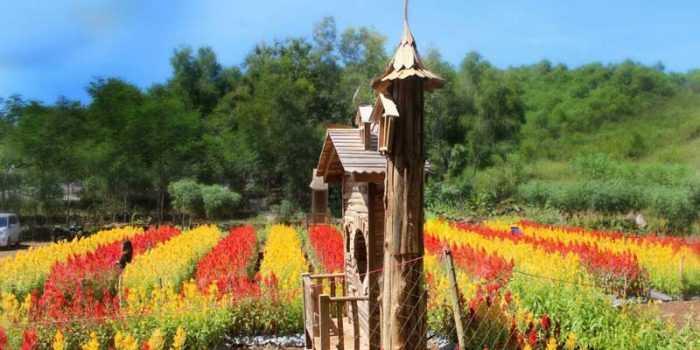 "Taman Celosia, ""Spot"" Cantik Liburan ala Eropa"