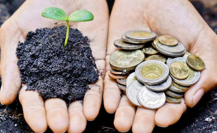 Apa Itu Tanggung Jawab Sosial dan Lingkungan Perusahaan?