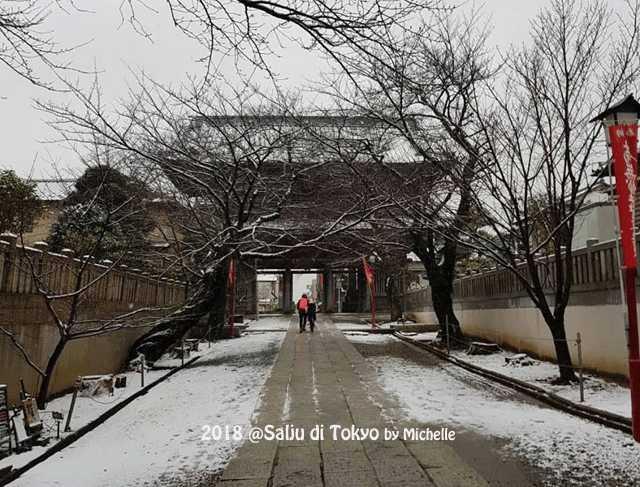 Gempa dan Badai yang Sering Melanda Jepang, Michelle dalam Badai Salju di Chiba