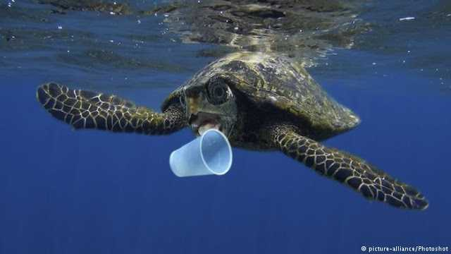 Sulap Sampah Plastik jadi BBM Demi Lindungi Laut Indonesia