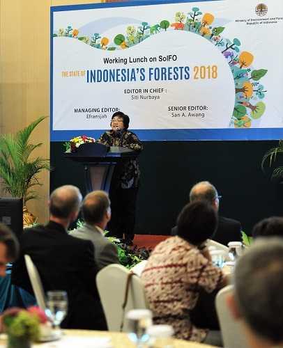 Apresiasi Internasional pada Perubahan Tata Kelola Hutan Indonesia