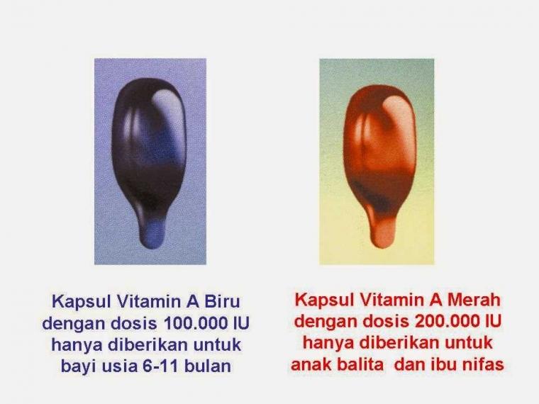Vitamin A Kaya akan Manfaat untuk Balita dan Ibu Nifas