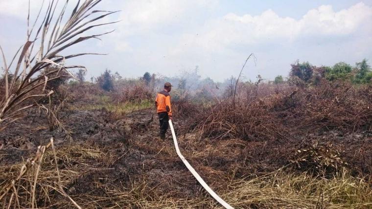 Adakah Jurus Jitu Memadamkan Kebakaran Hutan dan Lahan Gambut?