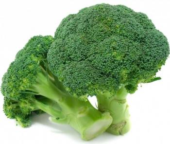 Unduh 680+ Gambar Bunga Brokoli Terbaik