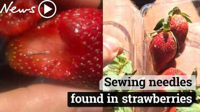 Penemuan Jarum dalam Strawberry yang Meresahkan Warga Australia
