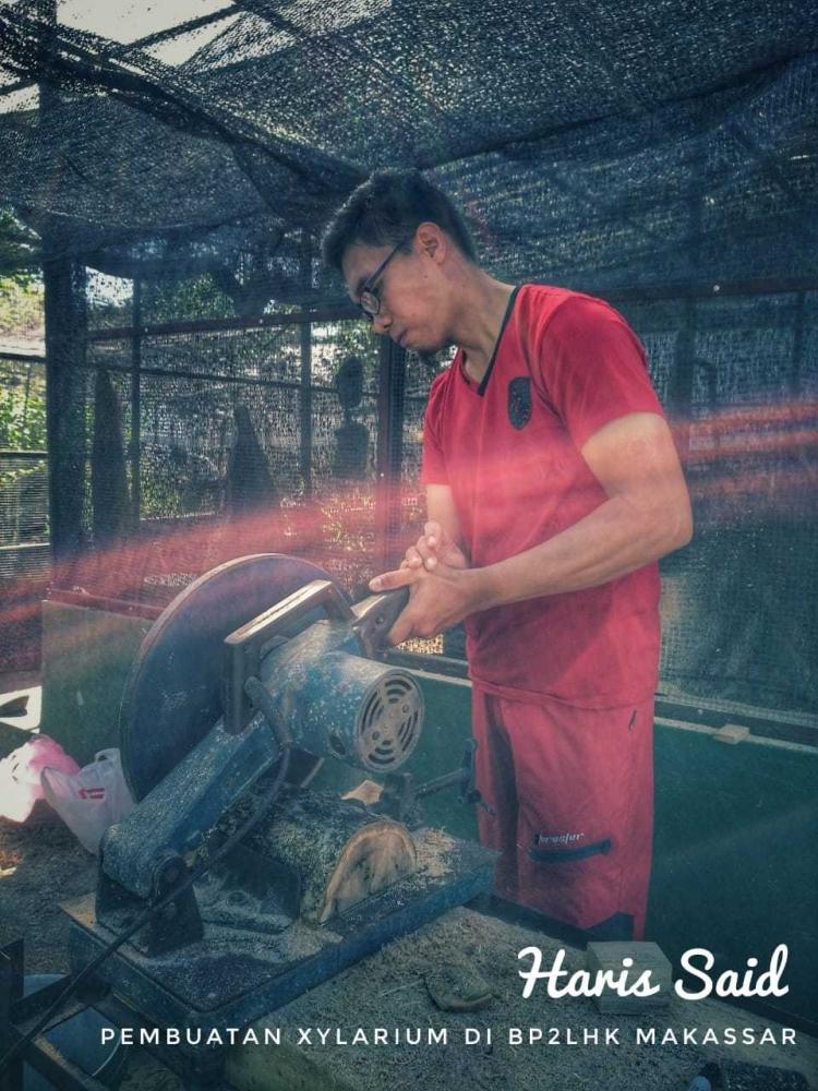 BP2LHK Makassar Bantu Wujudkan Indonesia Peringkat Satu Dunia Xylarium