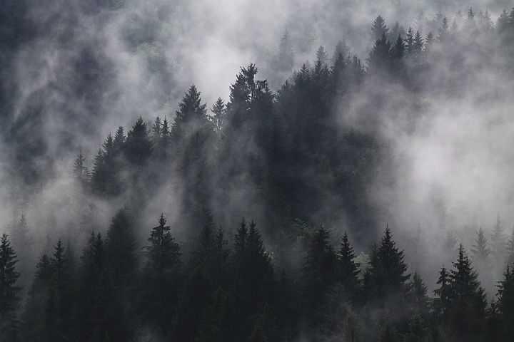 Cerpen | Ketika Kabut Itu Pergi (1) #5