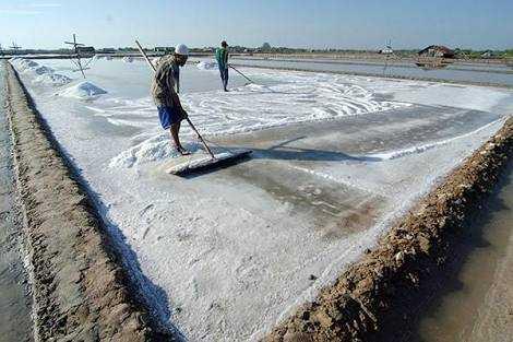 Kaya Garis Pantai, Mengapa Garam Masih Impor?