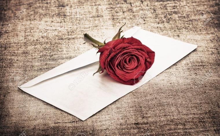 Surat Untuk Puan