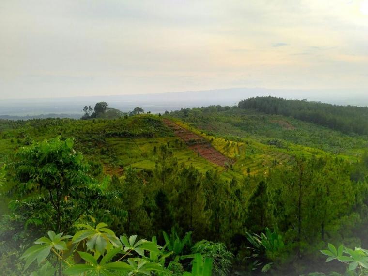 Bukit Munggang Jati, Salah Satu Dataran Tinggi Terindah di Kabupaten Cilacap
