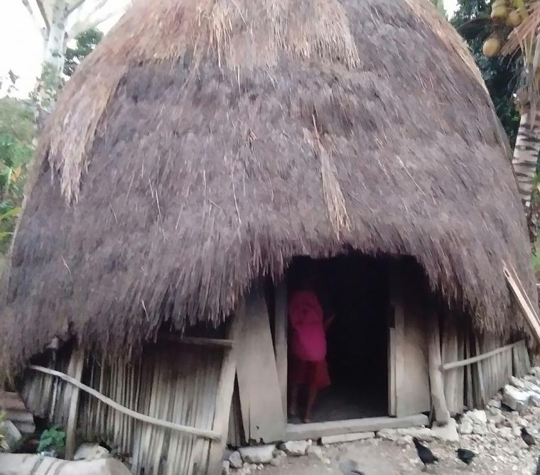 """""""Ume Kbubu"""" Rumah Tradisional Masyarakat Timor yang Ramah Lingkungan dan Tahan Gempa"""