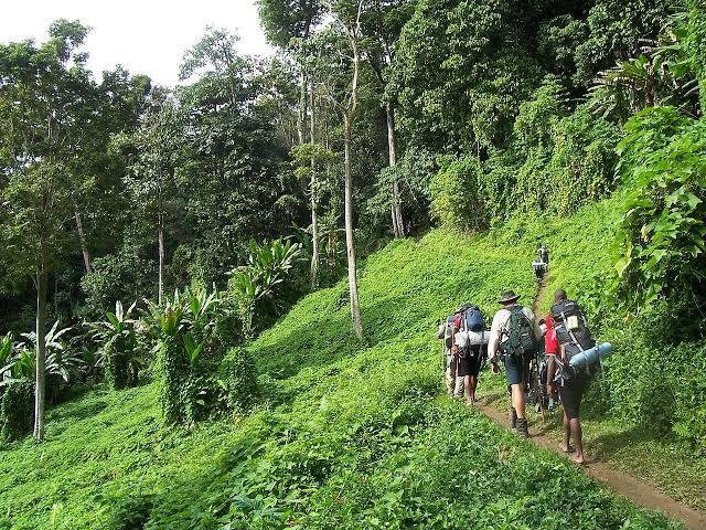 Catatan Senja di Tanah Papua