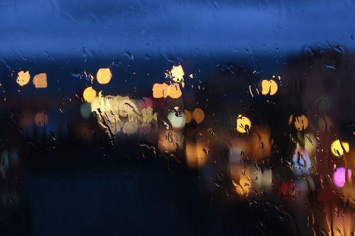 Puisi | Laron-laron Sehabis Hujan