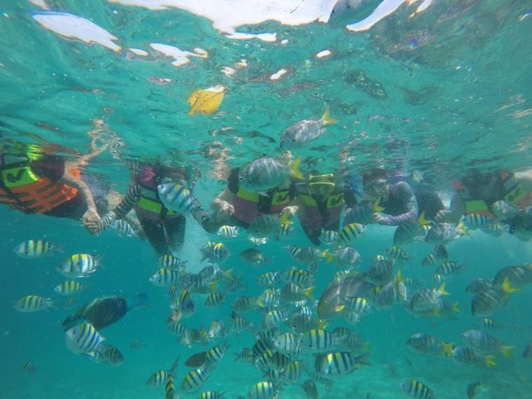 Cantiknya Pesona  Bawah Laut di Sabang