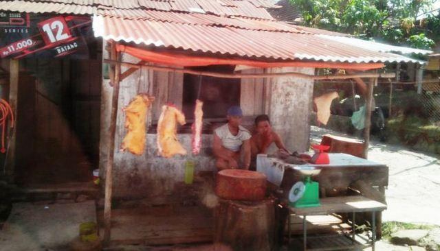Tradisi Orang Batak Makan Daging Anjing Bermula dari Habinsaran?