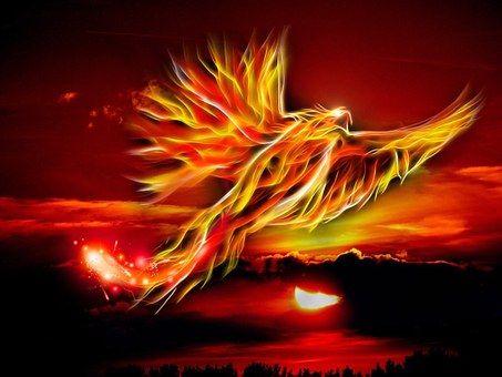 Kepak Burung Merah