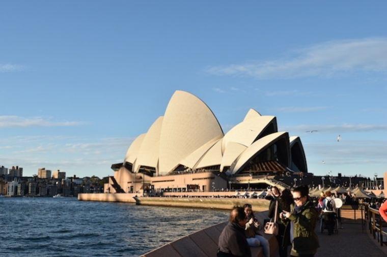 """Sydney Fish Market, Birds and Sunset"""