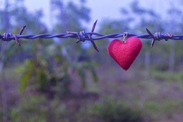 Cinta Melewati Banyak Batas