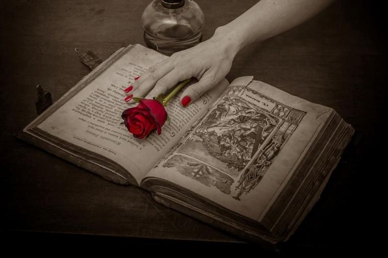 Puisi | Aku Masih Mengeja Rindu, Kamu Sudah Menulis Buku