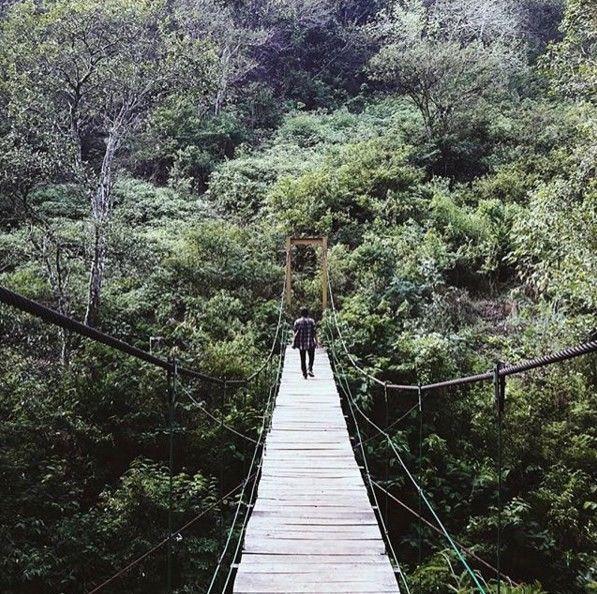Menjelajahi Alam Taman Hutan Raya Ir H Djuanda