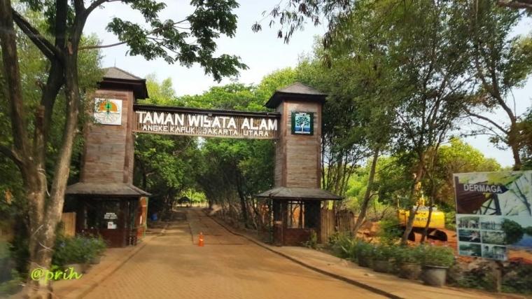 Belajar Harmoni dari Taman Wisata Alam Angke Kapuk