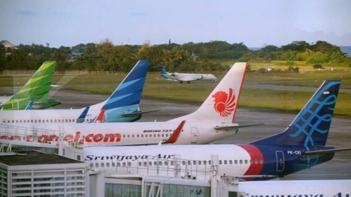 Domino Effect Naiknya Harga Tiket Pesawat dan Bagasi Berbayar, Pemerintah Mau Gimana?
