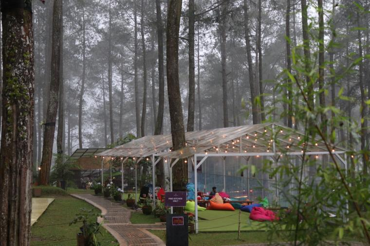 Kekayaan Alam di Orchid Forest Cikole