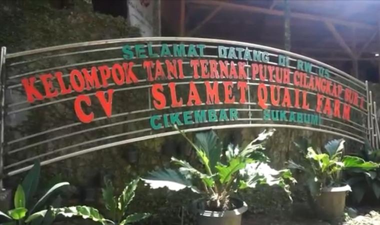 """Slamet Wuryadi, """"Menyulap"""" Puyuh Menjadi Mutiara"""