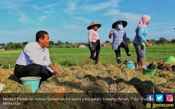 Solusi Kreatif Pertanian dari Ardath & 2 Jendral Indonesia, Inovasi, Kreatif dan Bayar Harga