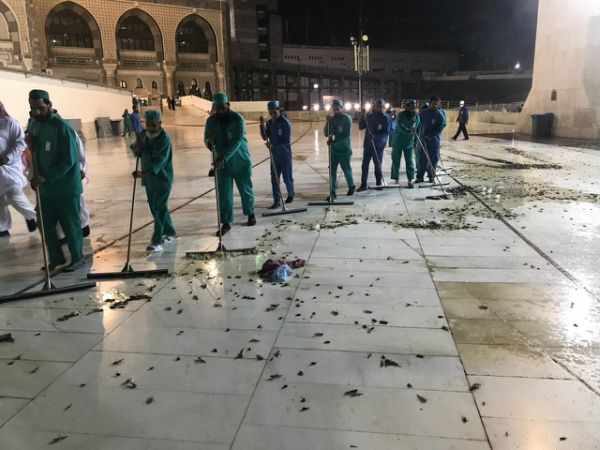Di Makkah dan Madinah, Umat Muslim Punya Musuh Bernama Jangkrik
