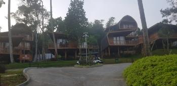 Spark Forest Adventure Resort Unik Di Sukabumi Halaman All