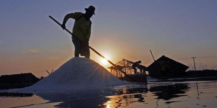 Strategi Pengembangan Industri Garam Nasional