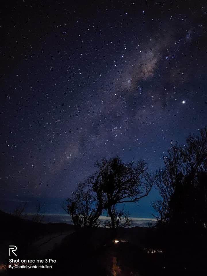 Bintang Malam