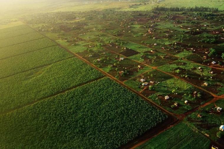 Perlunya Reforma Agraria di Indonesia