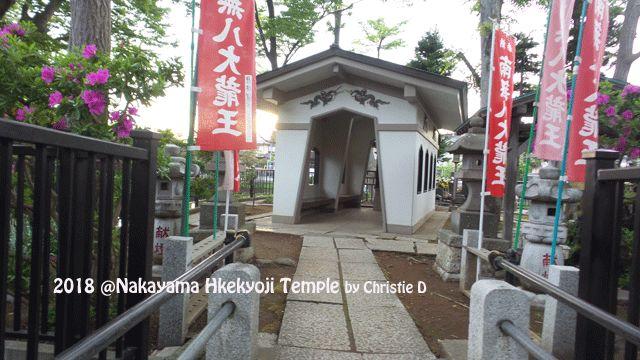 """Hachidai Ryuda"", Aula untuk 8 Dewa Naga dan Kompleks Pemakaman Mahalnya"