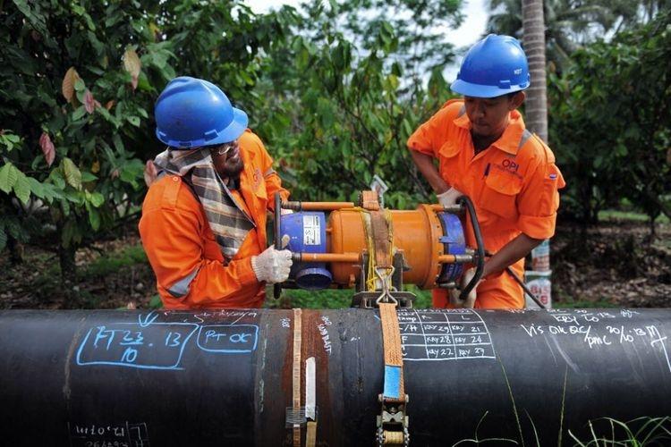 Subsidi 3 Kg Akan Dikurangi dan Tabung LPG Dikonversi ke Jargas, Pemerintah Serius?