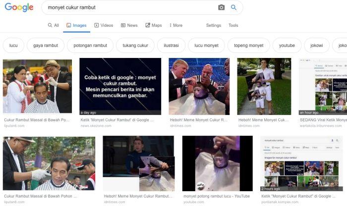 Tega, Google Sandingkan Jokowi dengan Monyet Cukur Rambut