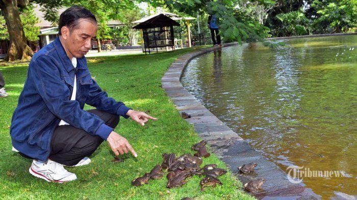 Pak Jokowi, Ada Calon Menteri di Kompasiana