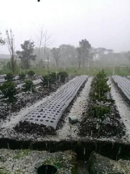 """Hujan Es di Aceh, Ribuan """"Batu"""" Berjatuhan dari Langit"""