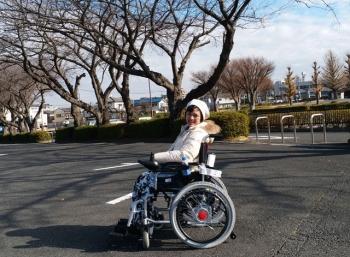550 Kursi Roda Sakura Gratis Terbaik