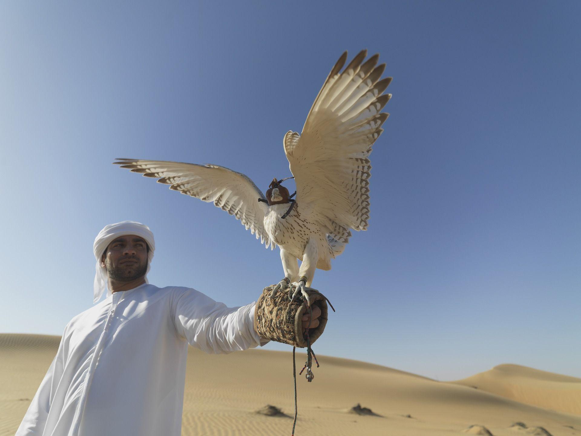 Investasi Negara Islam dan Arab
