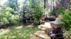 Cara Membuat Taman Sederhana yang Indah dan Asri di Rumah
