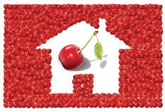 Cherry Picking, Pengaburan Logika dan Hoax