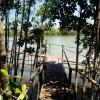 Ekowisata Wana Tirta Berkomitmen Menjaga Kelestarian Hutan Mangrove dan Pesisir