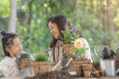 Ini Manfaat yang Bisa Kamu Dapat jika Memiliki Kebun Sendiri